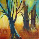 Spechtsbäume